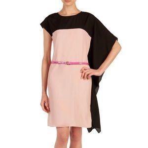Ted Baker Ziviaa Color Block Draped Dress